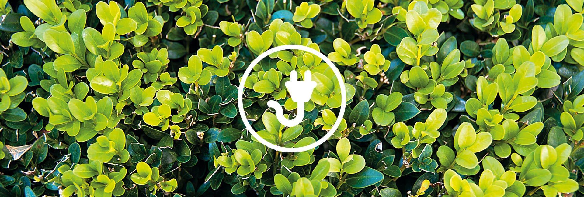 Sähkökäyttöiset pensasleikkurit