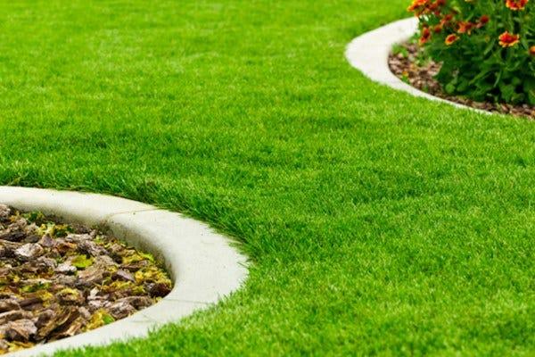 Comment créer une bordure d\'allée ou de pelouse parfaite