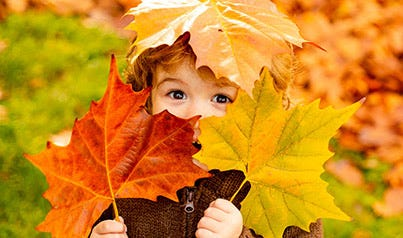 Profitez de l'automne
