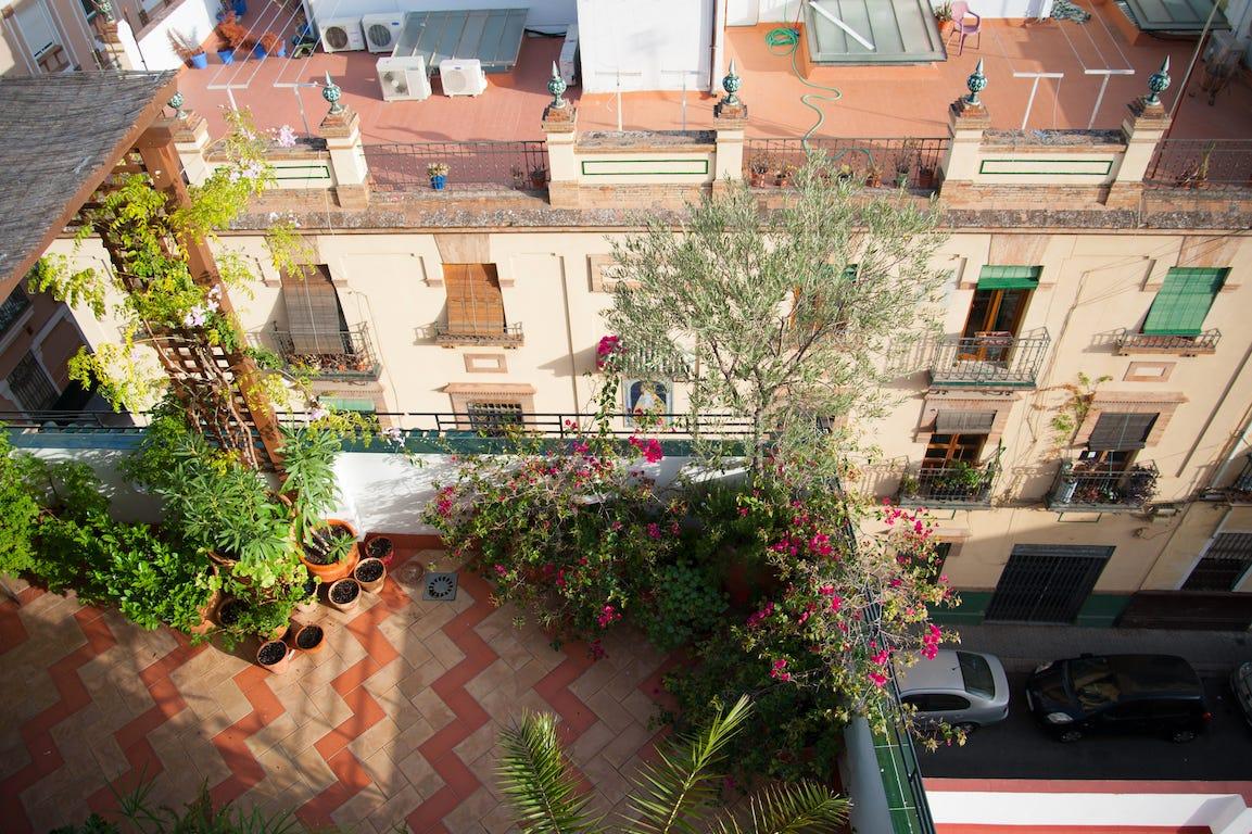 balcon sur immeuble avec végétaux