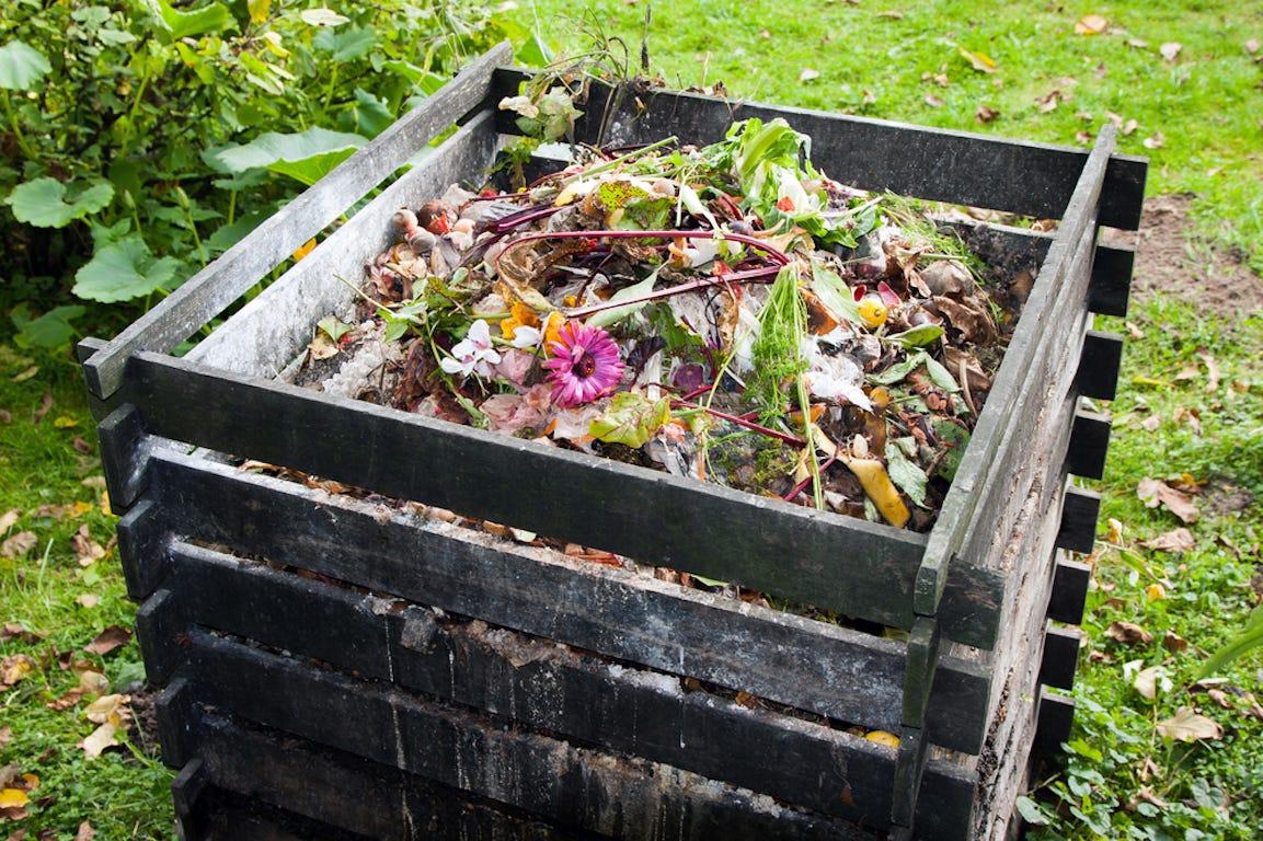 compost rempli dans un contener en bois dans un jardin