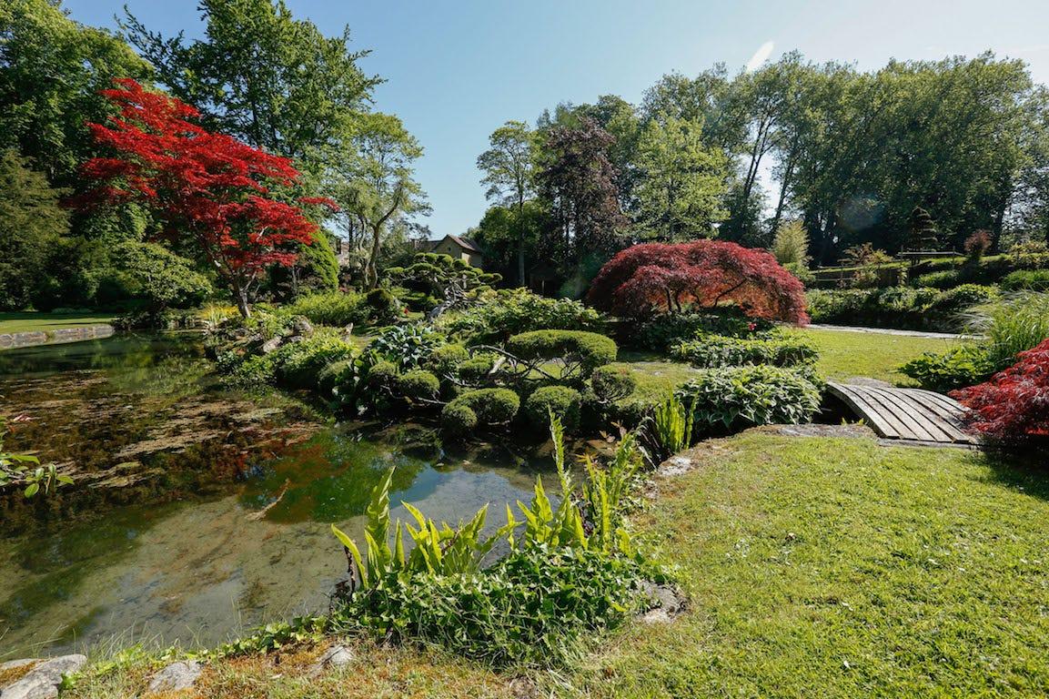Jardin japonais de Philippe Bajcik à Courances