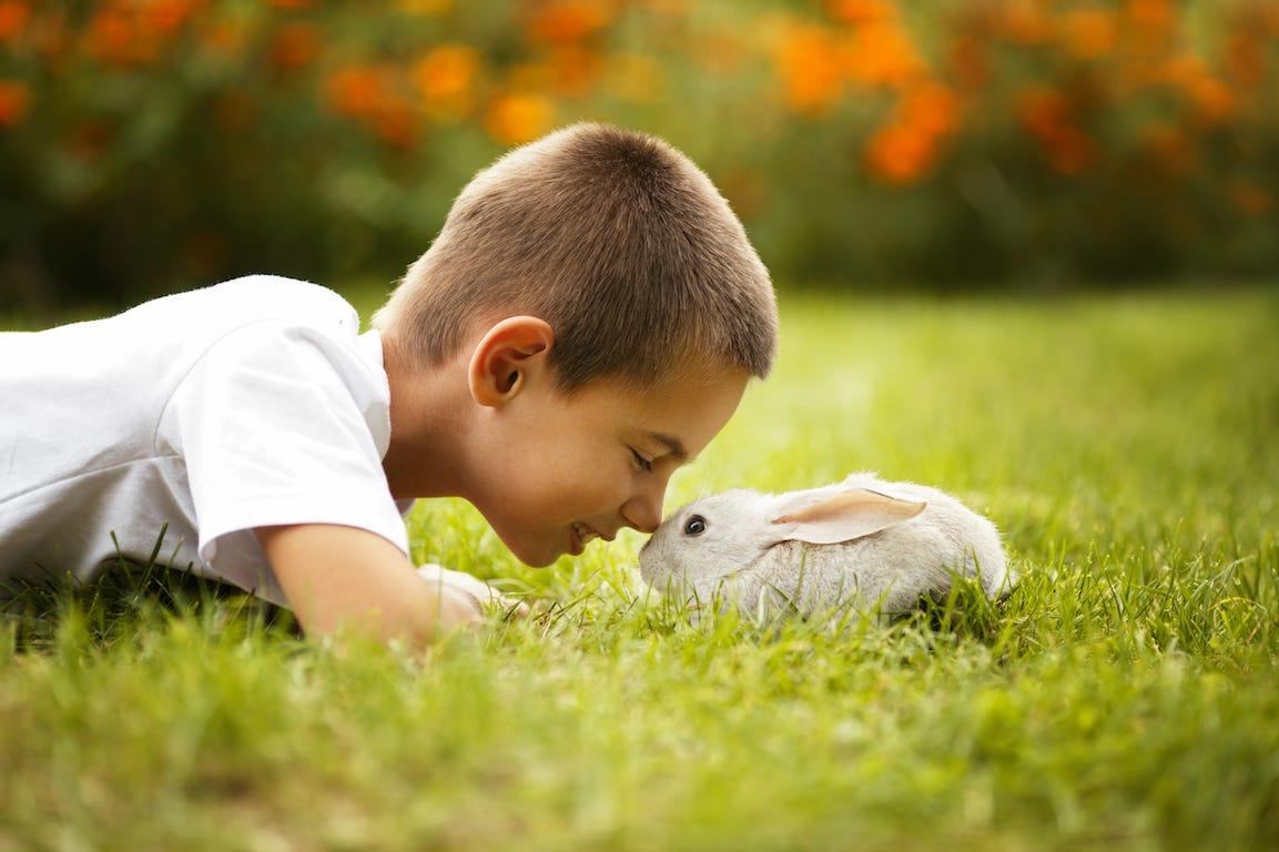 enfant avec un lapin dans le jardin