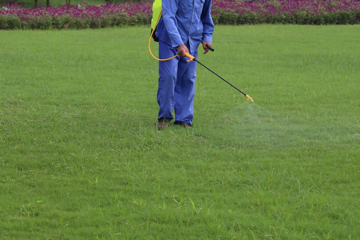Interdiction des pesticides : vers une tonte plus belle et plus bio