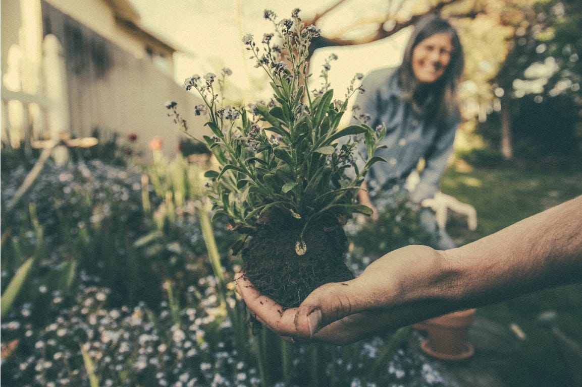 A hand holding a lavender plant, a woman smiling in the background.