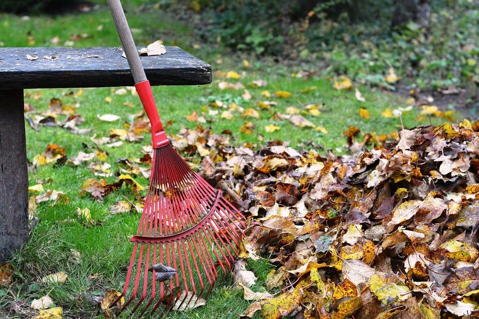gazon hark bladeren composteren