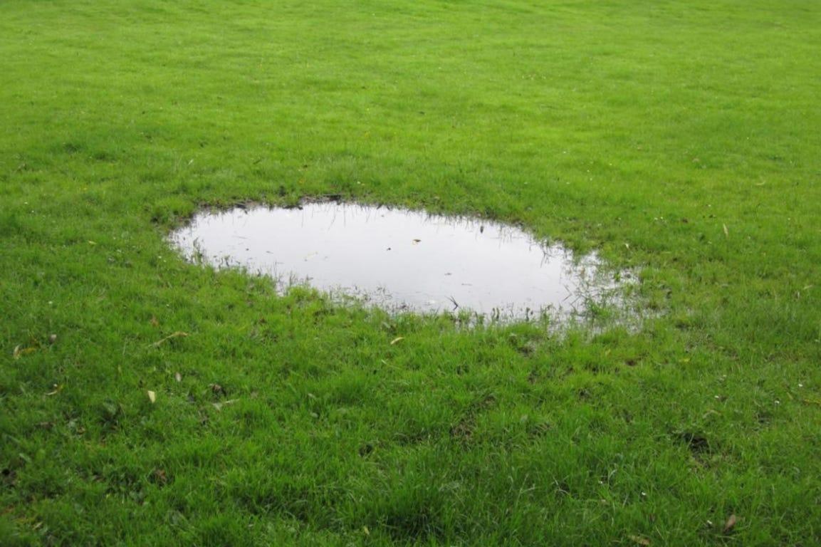 Gazon plas verdichte bodem gras water
