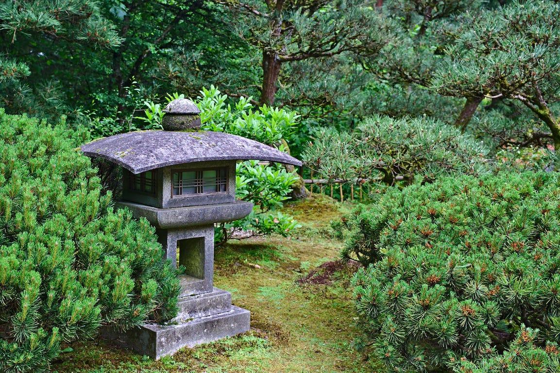 Allée jardin japonais avec buisson et création petit temple