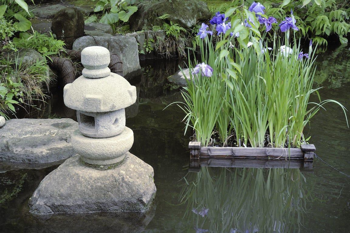jardin urbain avec bassin inspiration japonaise et potager flottant