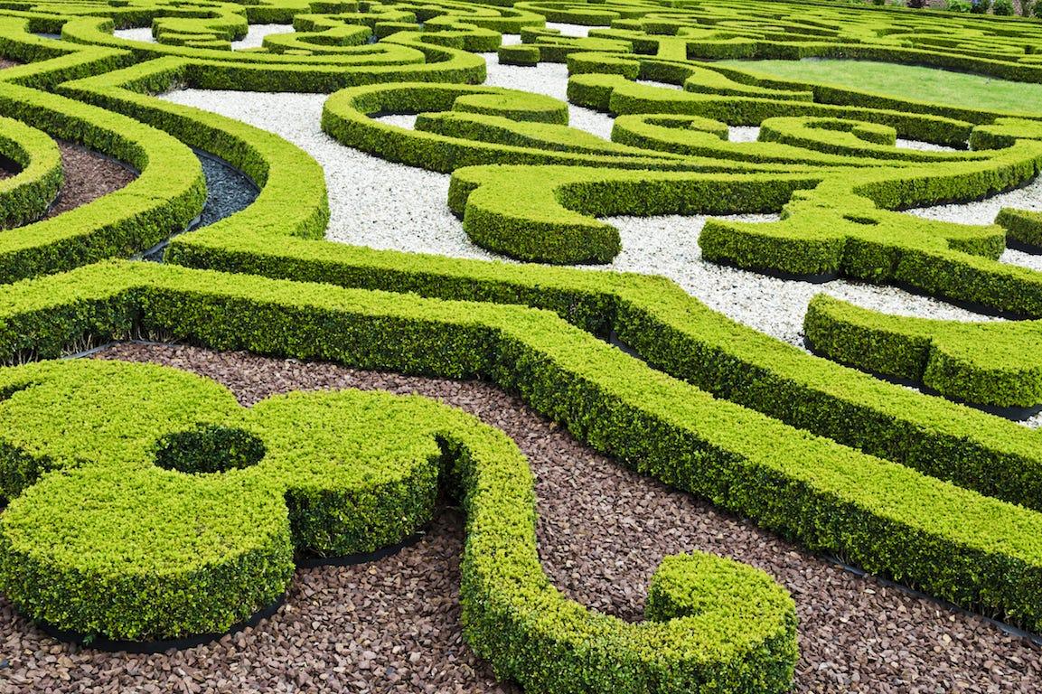 jardin à la française buis symétriques