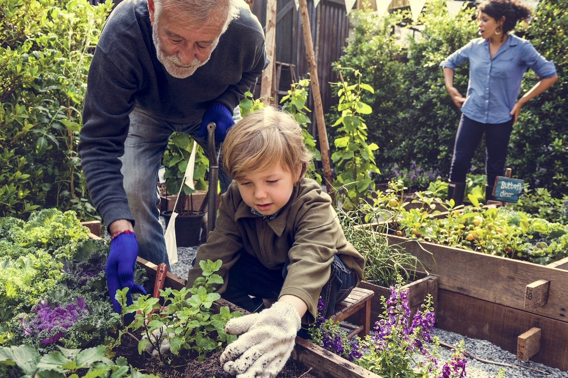 jardinage en famille dans potager