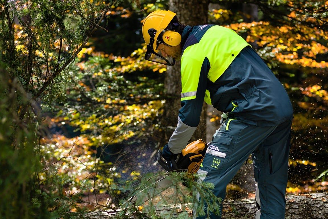 man in bos hout zagen kettingzaag veiligheidskleding