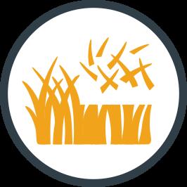 Vous pouvez choisir comment vous préférez couper l'herbe de votre pelouse, selon vos besoins