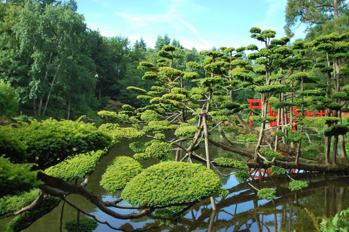 Maulevrier parc oriental avec bassin japonais