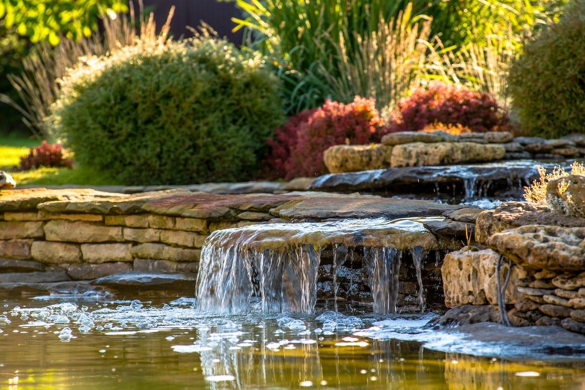 Plan d'eau dans un jardin