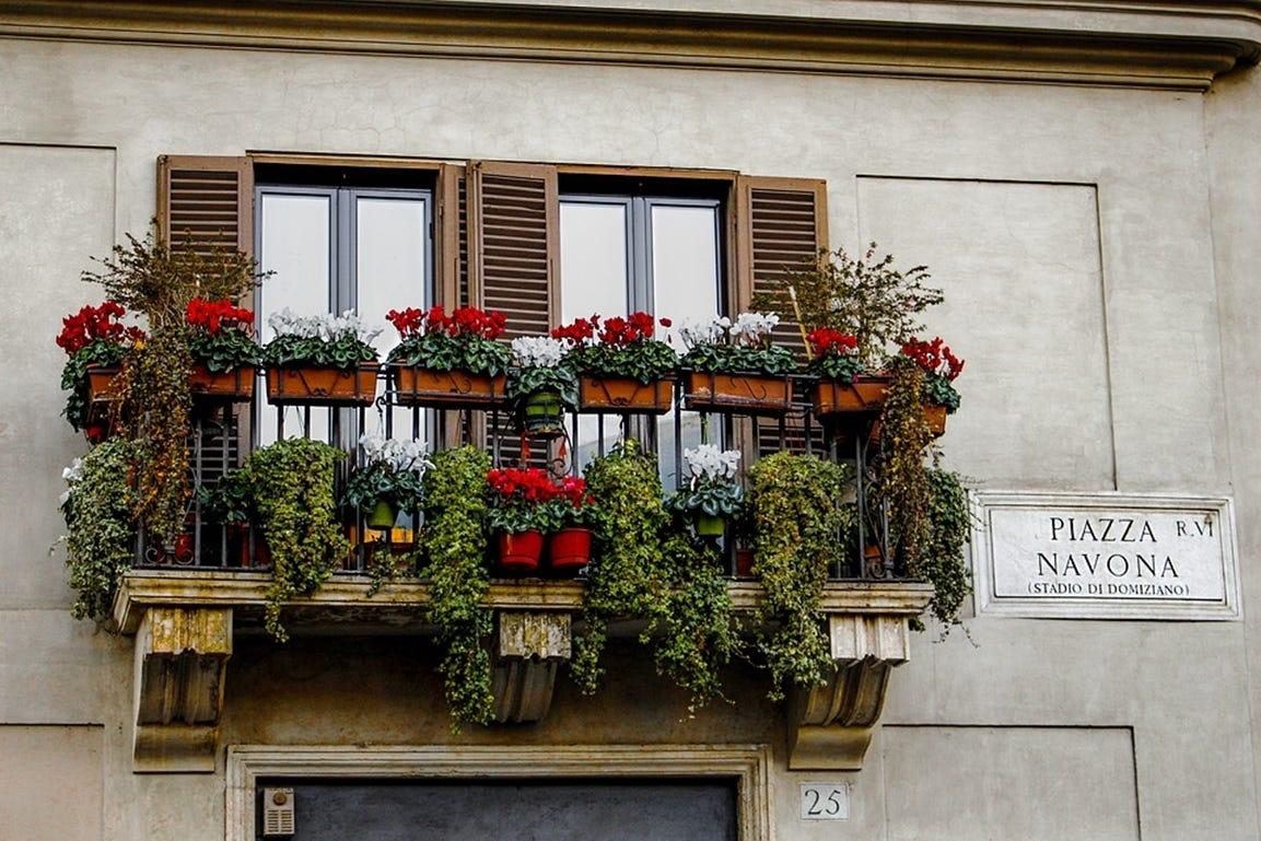 tuinieren in de lente bloemen in potten en bakken op balkon