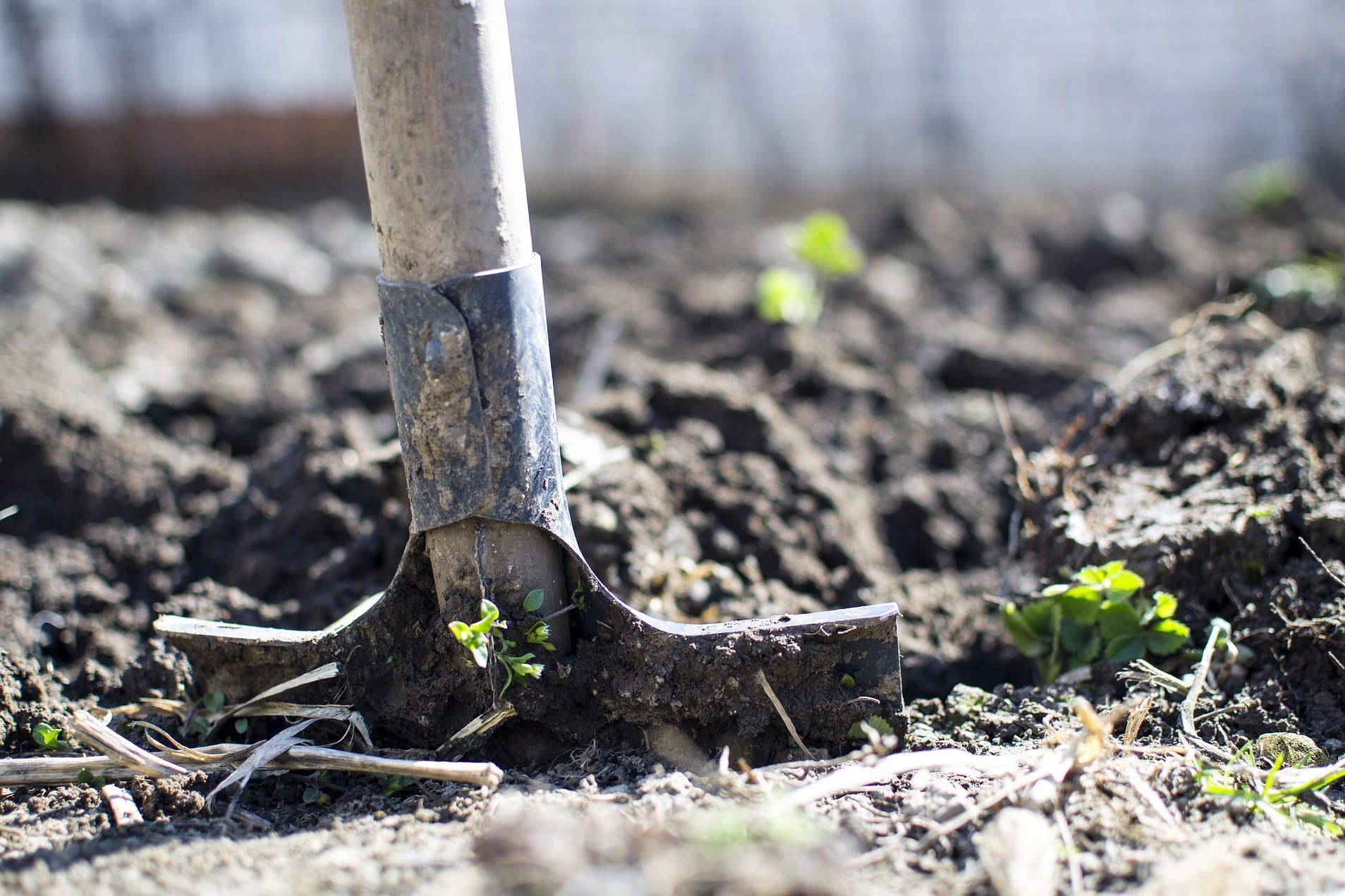 tuinieren in de moestuin bodem omwoelen