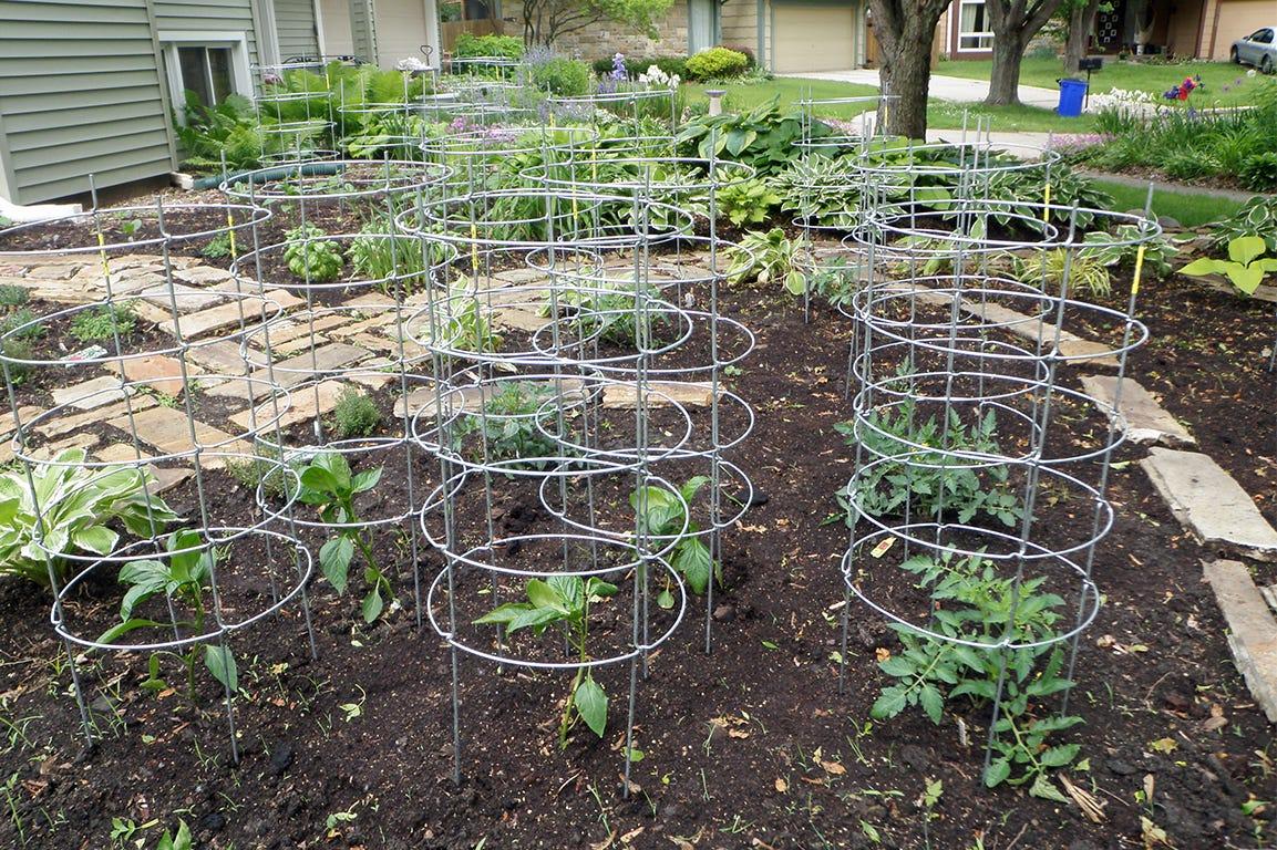 Komposten kan blive til et rigt jordsupplement til haven