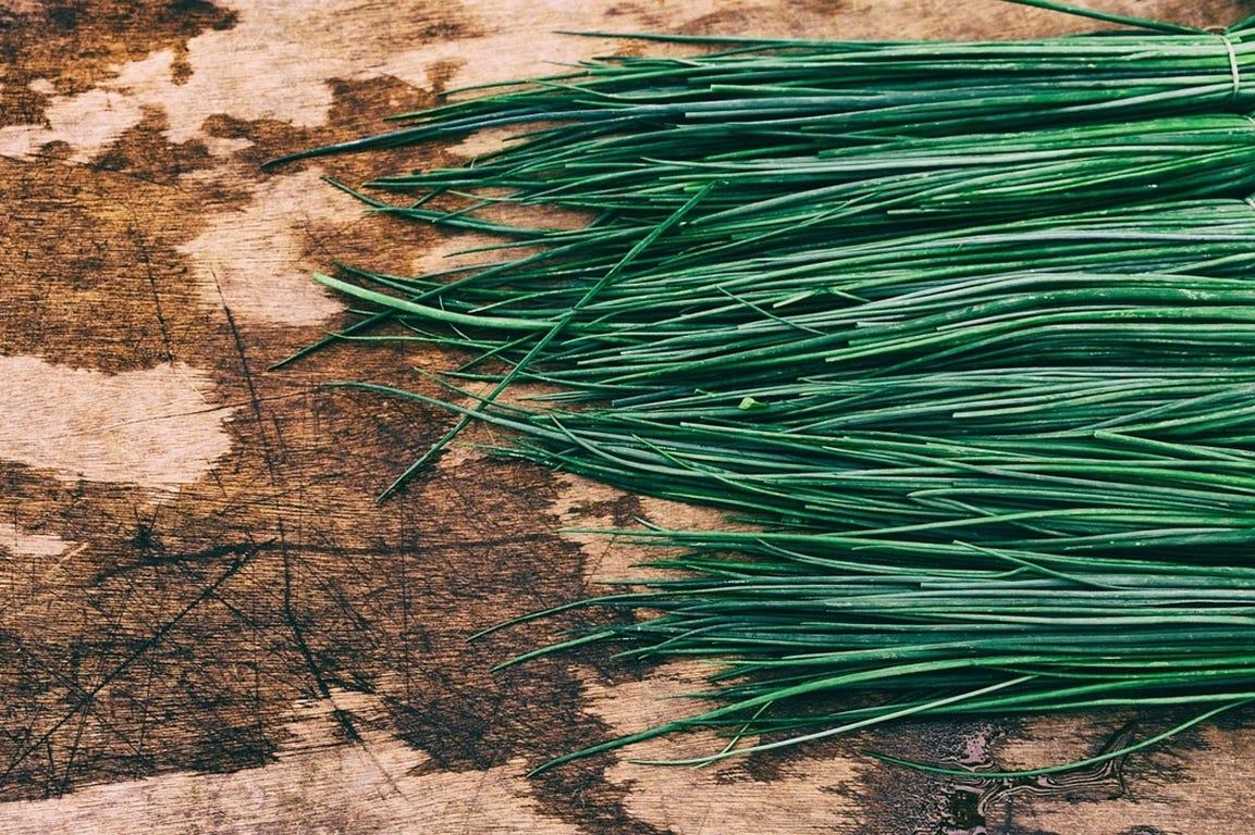 voordelen van zelf gekweekte kruiden bieslook