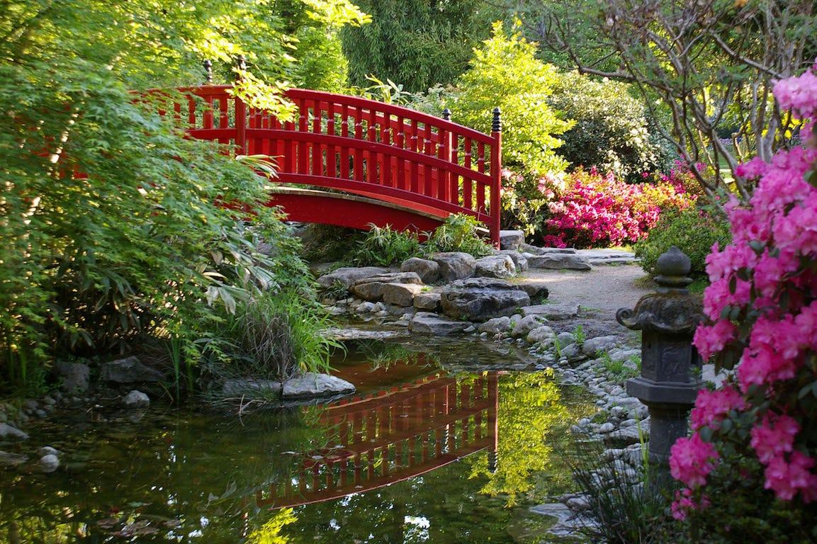 Reuil-malmaison parc de l'amitié en Haut-de-Seine avec pont rouge et bassin japonais