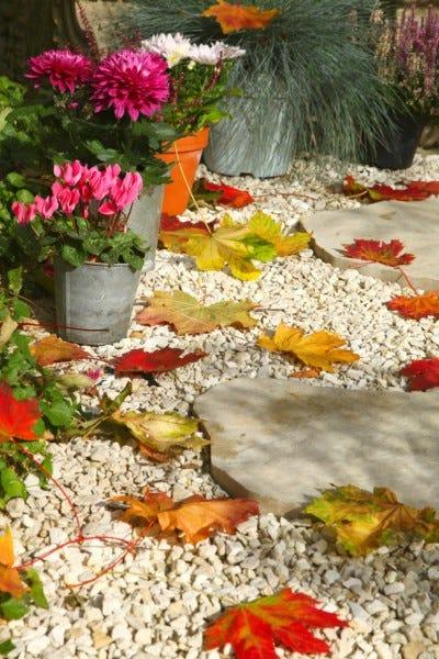 Nettoyer ses allées de jardin