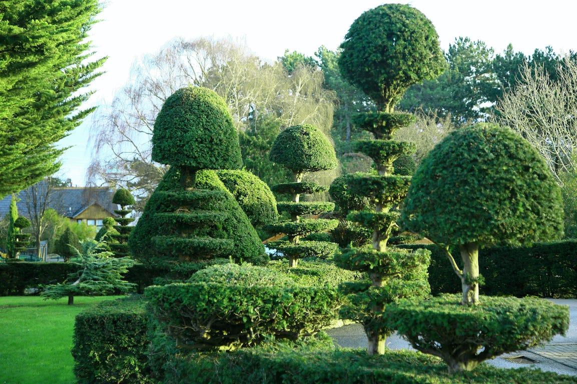 topiaires géométriques et symétriques jardin à la française