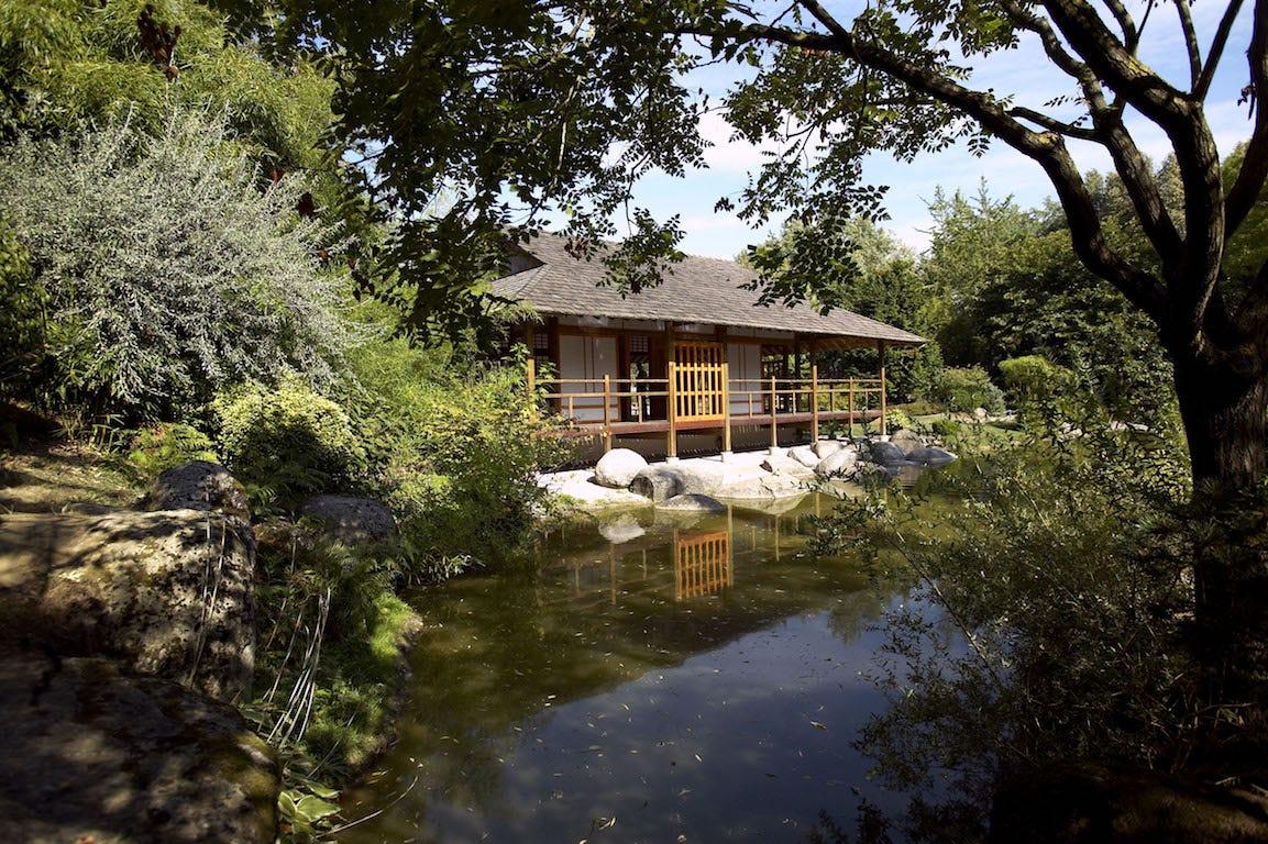 maison japonaise jardin avec bassin