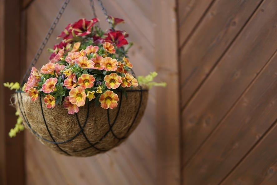 stiga calendrier de jardinage avril quelles fleurs a planter pour les paniers suspendus