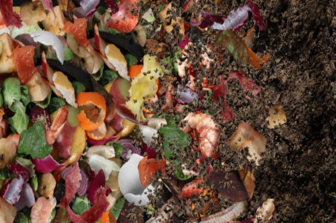 compost van fruit en groenten